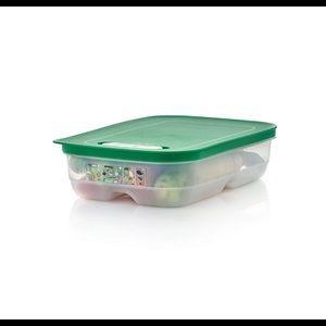 Tupperware Fridgesmart (Medium)